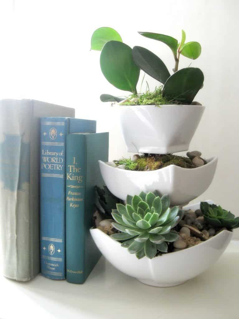 diy-succulent-planter-creative-christmas-list