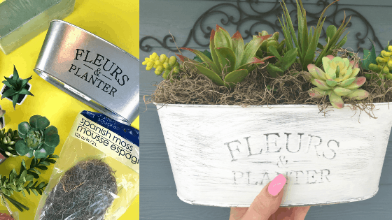 SUCCULENT CRAFT DIY FROM DOLLAR TREE